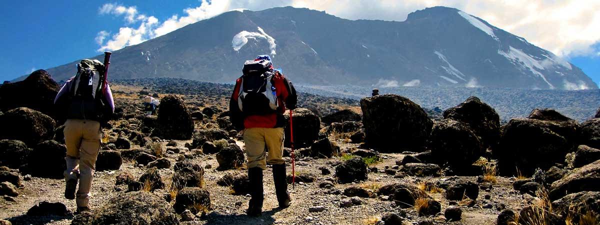 8-days-Kilimanjaro-climb-lemosho-route